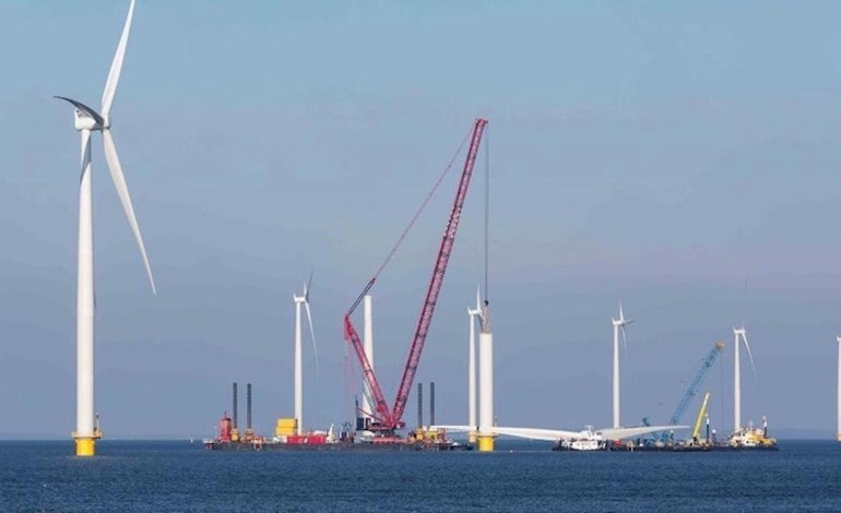 Ocean Winds unveils Irish offshore ambitions